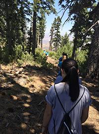 Hiking the Pacific Coast Rim
